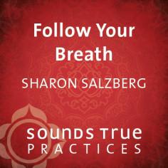 Follow Your Breath