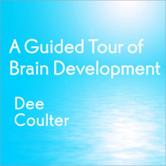 A Guided Tour of Brain Development