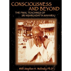Consciousness and Beyond