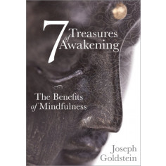 7 Treasures of Awakening