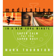 Meditation in a New York Minute