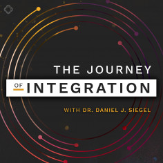 The Journey of Integration FREE PREVIEW