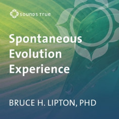 The Spontaneous Evolution Experience