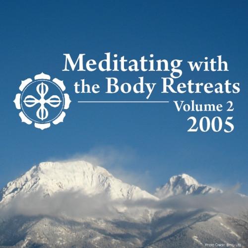 Meditating with the Body 2005 Retreats: Volume 2