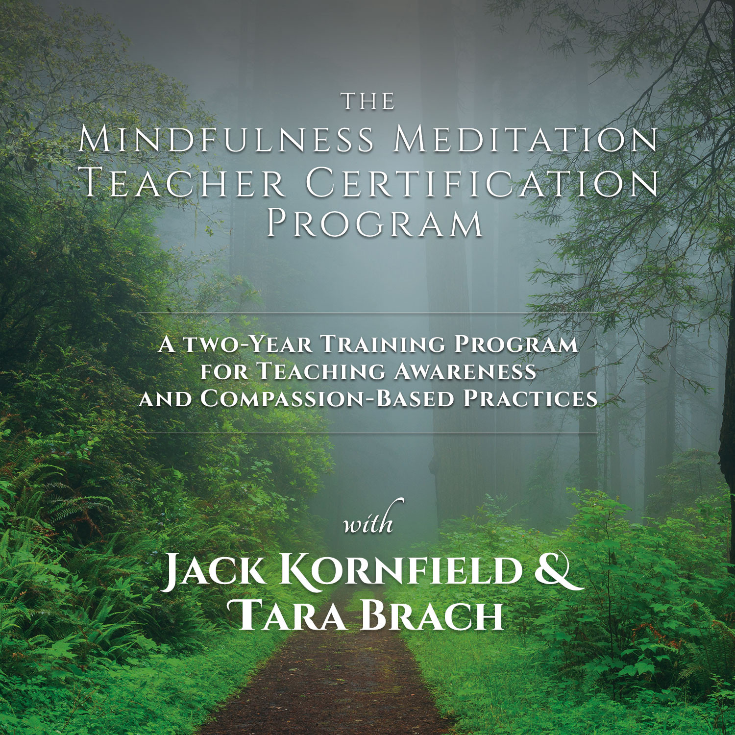 Sounds True Mindfulness Meditation Teacher Certification Program