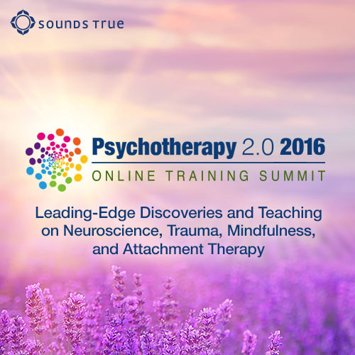 Psychotherapy 2.0 2016 CE Credits