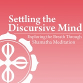 Settling the Discursive Mind