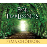 From Fear to Fearlessness