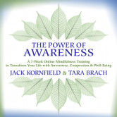 The Power of Awareness (Course Available 11/26/2018)