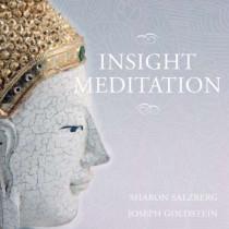 Insight Meditation
