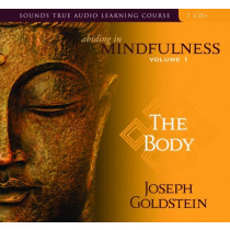 Abiding in Mindfulness Volume 1