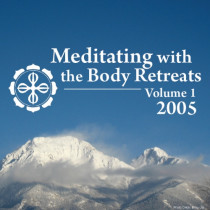 Meditating with the Body 2005 Retreats: Volume 1