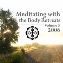 Meditating with the Body 2006 Retreats: Volume 3