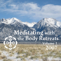 Meditating with the Body 2007 Retreats: Volume 1