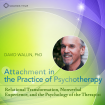 Attachment in The Practice of Psychotherapy