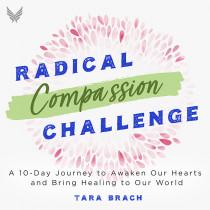 Radical Compassion Challenge