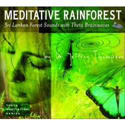 Meditative Rainforest