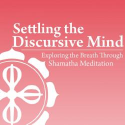 Settling the Discursive Mind
