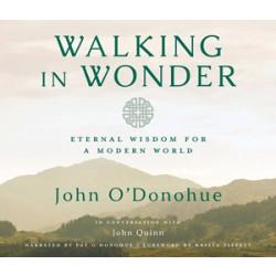 Walking in Wonder