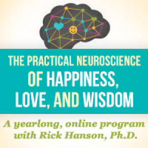 Foundations of Well-Being: A Yearlong, Online Program with Rick Hanson, Ph.D